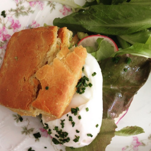 Avocado smash sandwich on a gluten-free biscuit